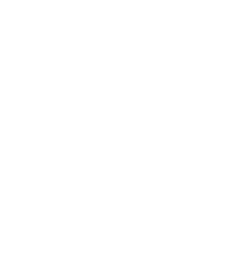 La Duchesse Anne